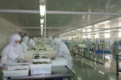 食品加工企业冷库安装造价