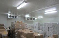 建造一个500吨食品速冻库需要投资多少钱