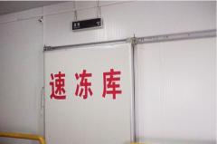 在上海80平米速冻库安装造价是多少