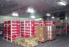 2500平米水果保鲜冷库安装建造成本是多少