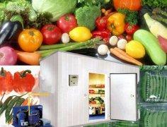 5000吨水果冷库建造工程,冷库造价多少