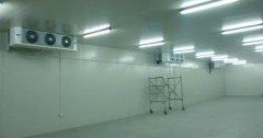 1500吨海鲜低温冷库设计规划,冷库价格多少钱