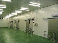 2500吨牛肉冷冻库,冷库价格及能耗