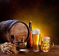 上海建造1000平米啤酒冷库(冷藏库)建设预算多少钱