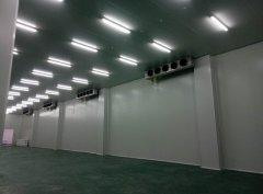 上海2-8℃体外诊断试剂冷库(恒温冷藏库)建造成本多少