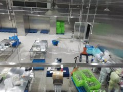 上海儒汇中央厨房2000㎡净菜加工冷藏库工程案例