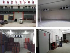 鲜果园大型冷藏库、气调库建设工程案例