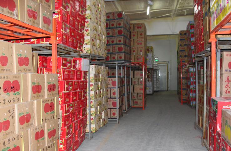 生鲜水果冷库设计建造的施工