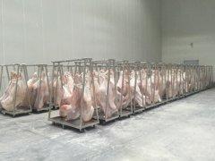 1000平牛肉冷藏库造价多少钱,低温冻肉冷库建造