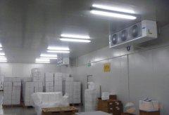 2000平食品冷冻库设计,-18℃海鲜冷冻品冷