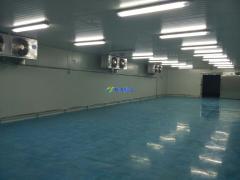 诺心食品7000平低温食品加工冷库设计建造