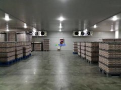 安装1300吨水果冷藏库预算是多少?后期用电能耗大吗?