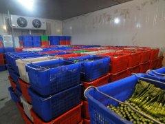 武汉7000立方米果蔬冷库安装需要多少钱?