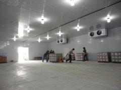 420平米的玉米恒温库安装价格怎么计算?保鲜冷库工程改建