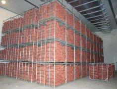 建一个90吨的洋葱冷库多少钱?洋葱可以在冷库里存多久?