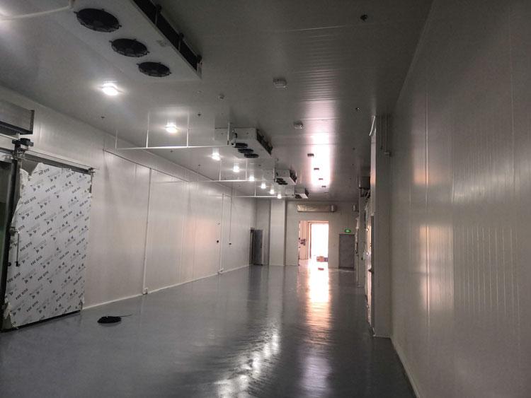 -20℃冷冻库安装制冷设备、保温库房造价咨询