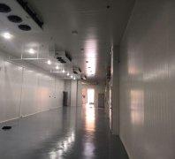 -20℃、-30℃冻库安装费用报价,500平米低温冷冻库